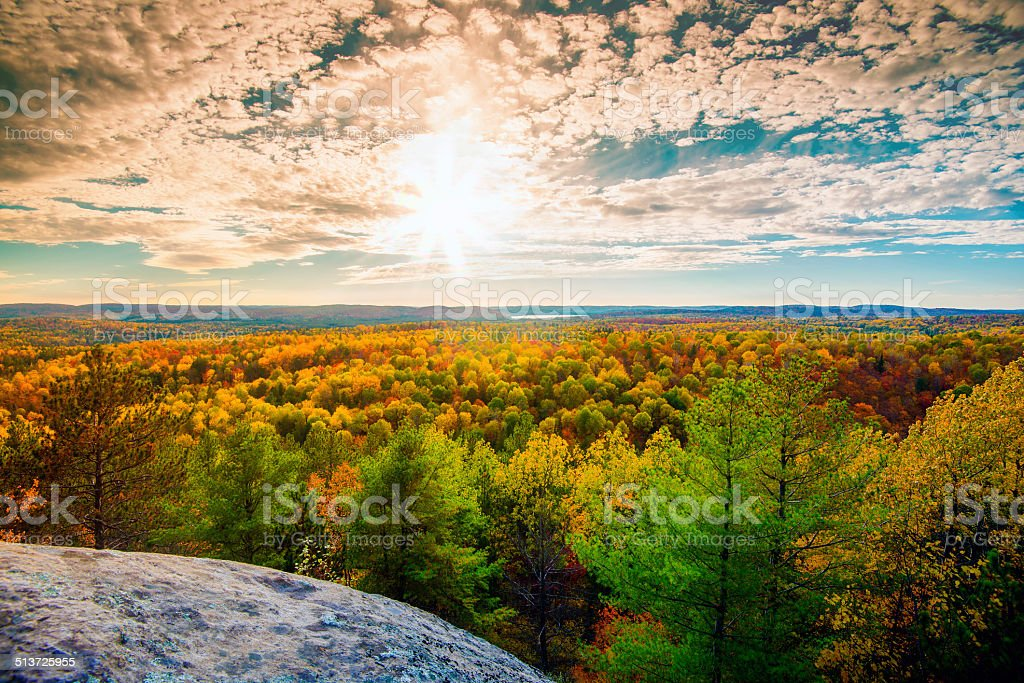 Sunlight Over the Treetops in an Autumn Forest stock photo