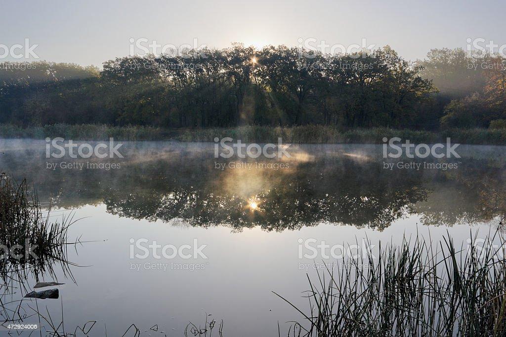 Luz del sol foto de stock libre de derechos