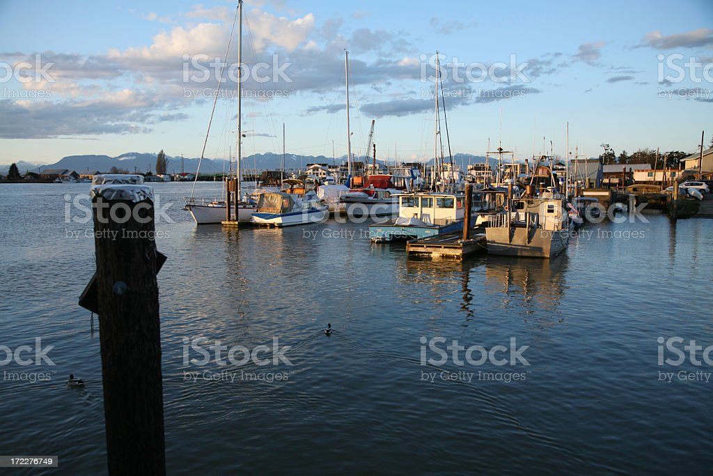 Sunlight Setting On Ladner Delta royalty-free stock photo