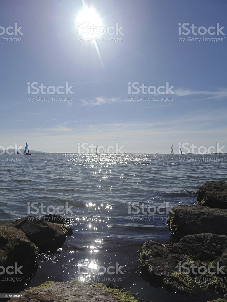 Sunlit Estuary royalty-free stock photo