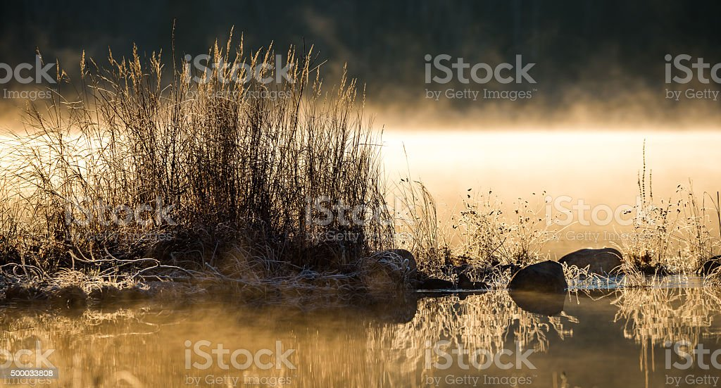 Sunlit fog on water. Frosted lakeside edge at dawn. stock photo