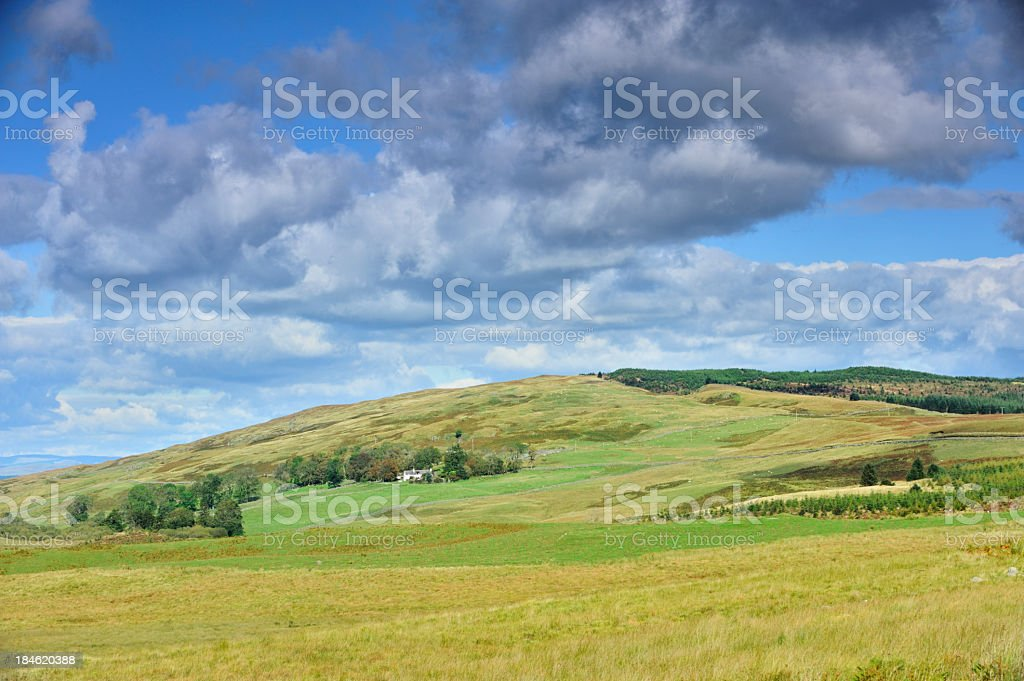 Sunlit Scottish rural scene with fields and hills. stock photo