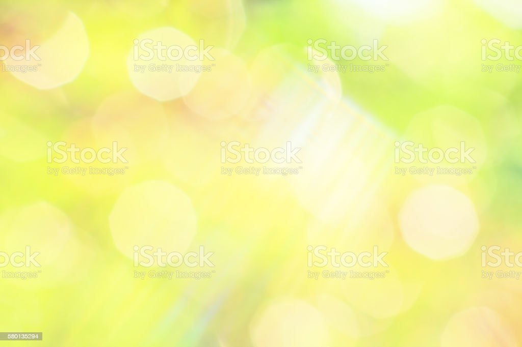 Sunny abstract background of a summer garden stock photo