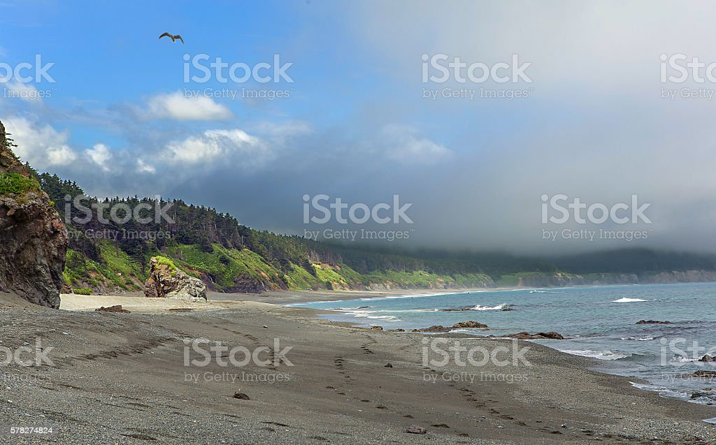 Sunny and foggy at one time stock photo