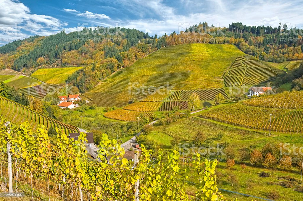 sunny autumn day in the Renchtal, Germany stock photo