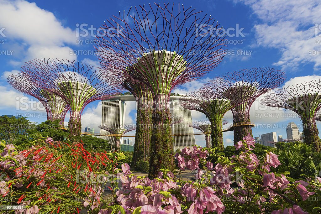 Sunny day at Gardens by the bay stock photo