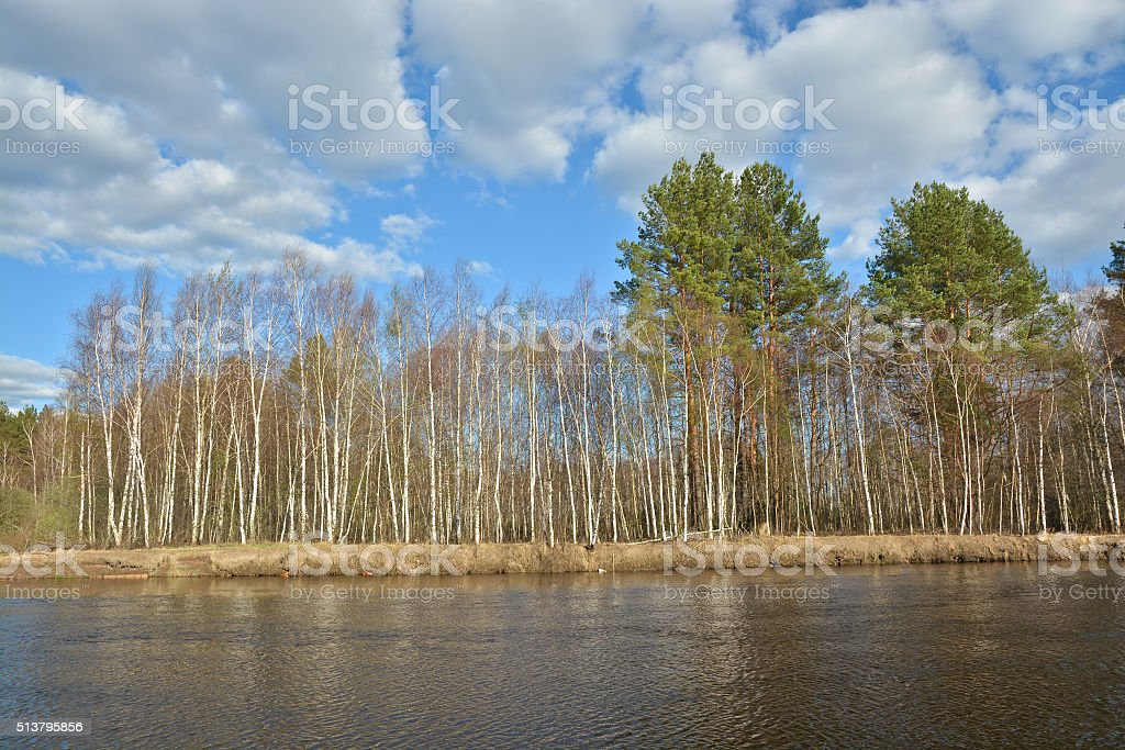 Sunny day at the spring river. stock photo