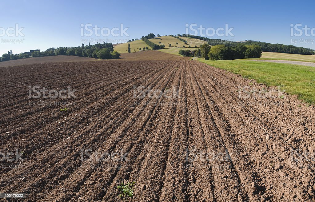 A sunny day down on the farm in the dirt royalty-free stock photo