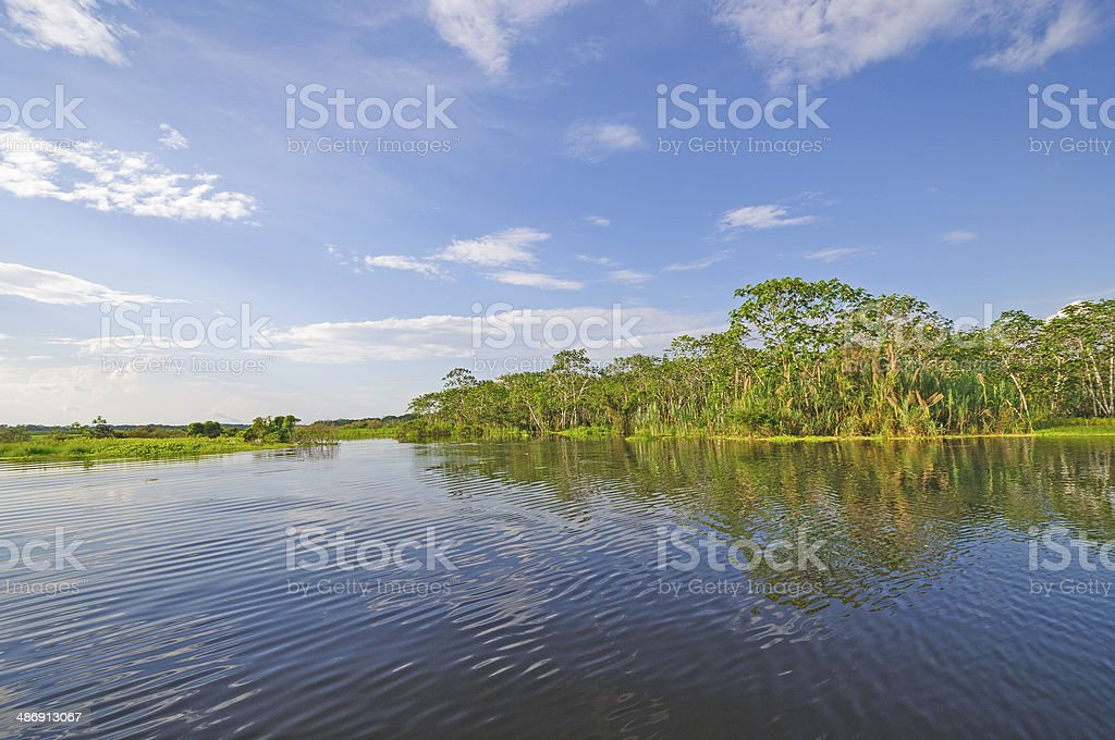 Sunny Day on a Blackwater River stock photo