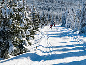 Sunny day on winter mountains with groomed cross-country trails