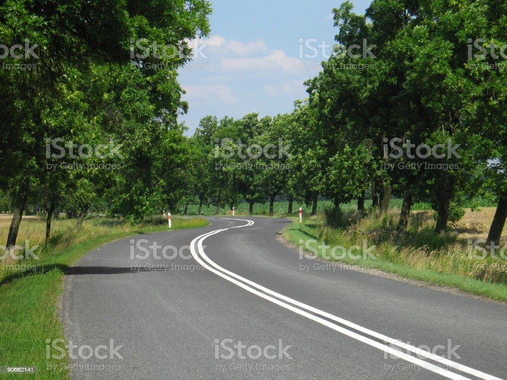Sunny day road royalty-free stock photo