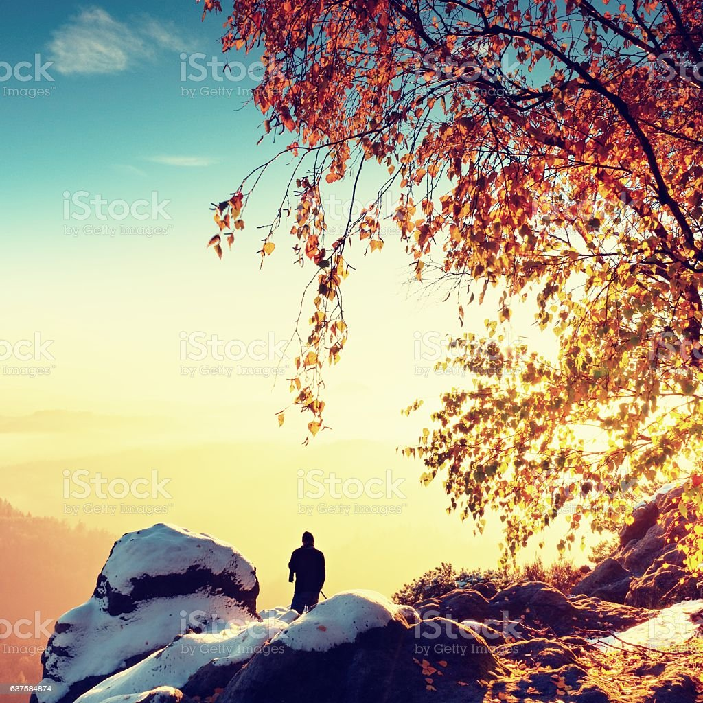 Sunny early winter  morning. Photographer preparing camera on tripod. stock photo