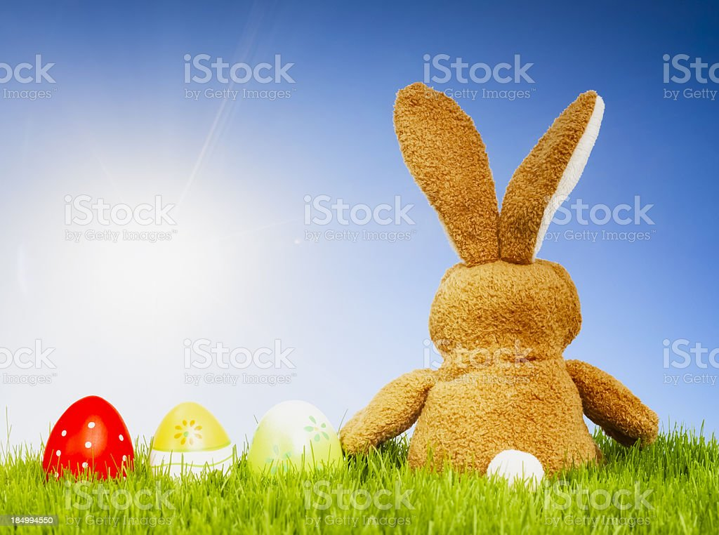 Sunny Easter Bunny royalty-free stock photo