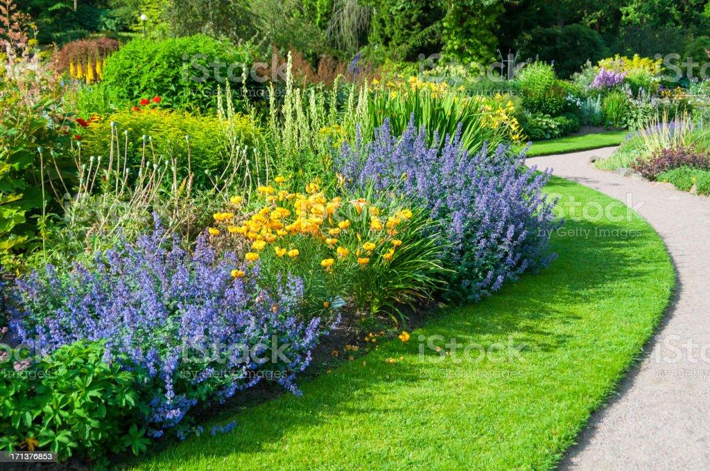Sunny garden stock photo