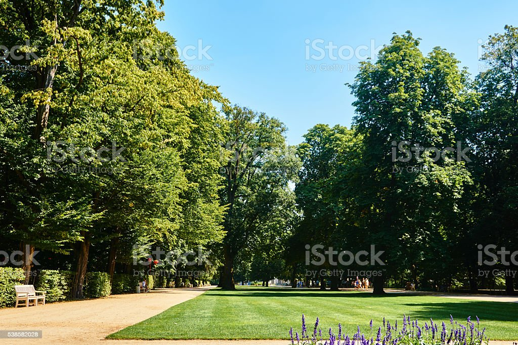 Sunny Green Park royalty-free stock photo