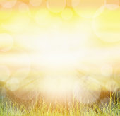 Sunny natur background with bokeh and sun rays  on grass