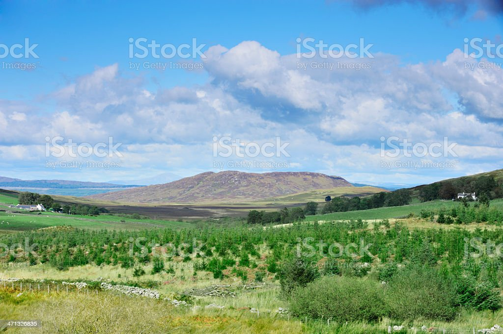 Sunny Scottish rural scene of fields and hills stock photo