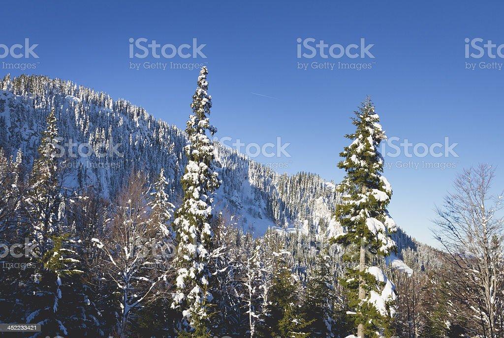 Sunny Snowy Mountain Morning stock photo