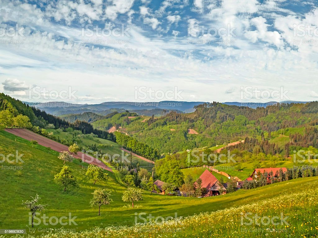 Sunny spring day in the Black Forest stock photo