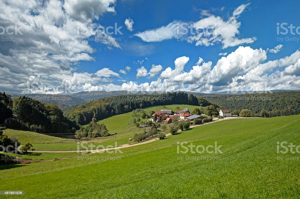sunny summer day in the Black Forest stock photo