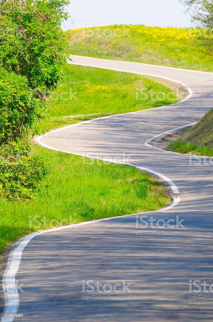 Sunny Winding Road royalty-free stock photo