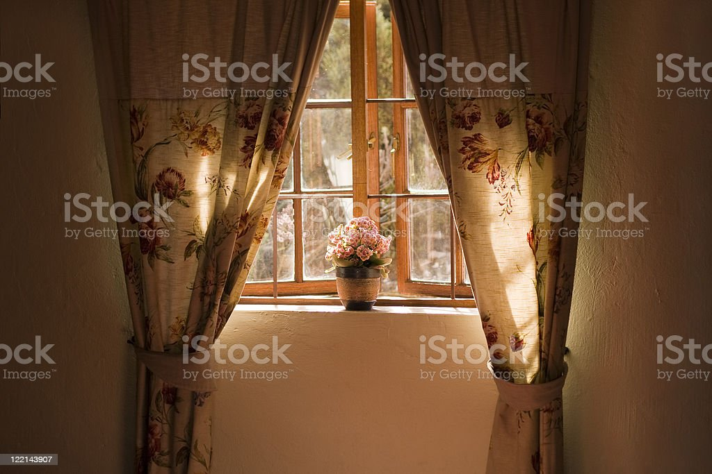 Sunny window sill with pot plant and curtains stock photo