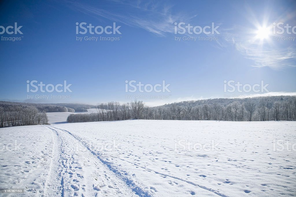 sunny winter day royalty-free stock photo