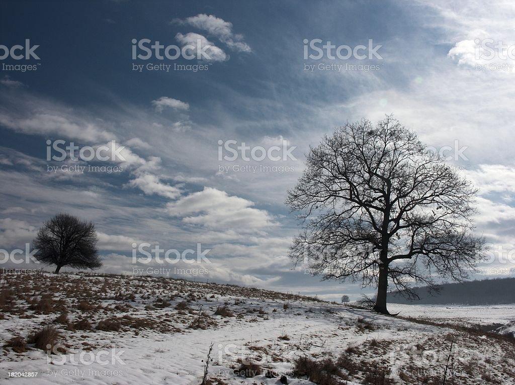 Sunny WInter Hill 4 royalty-free stock photo