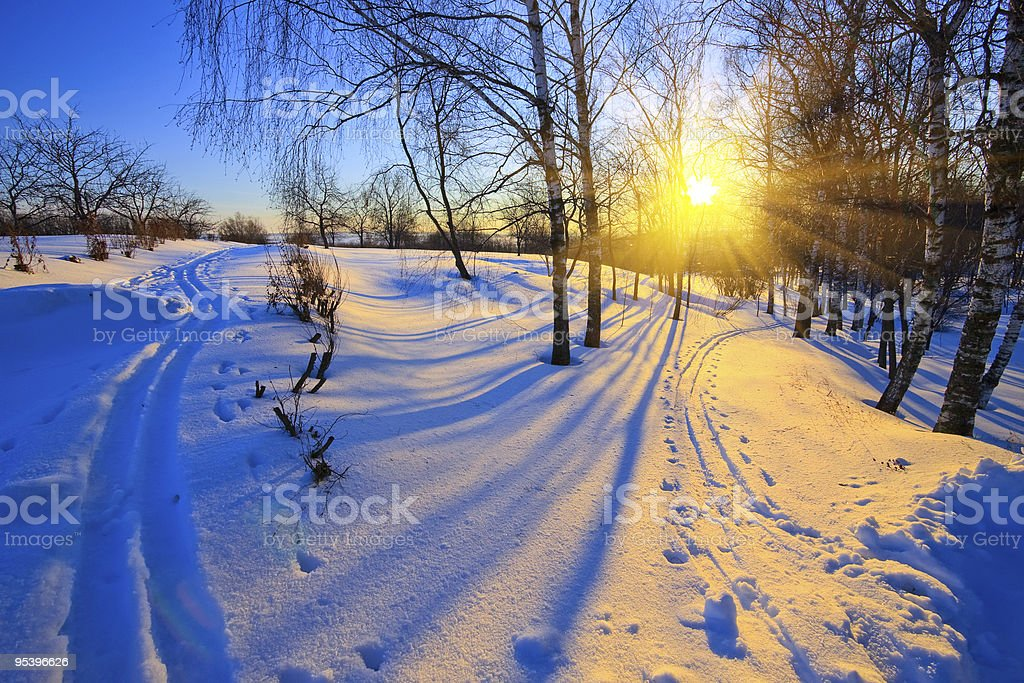 Sunny winter scene stock photo