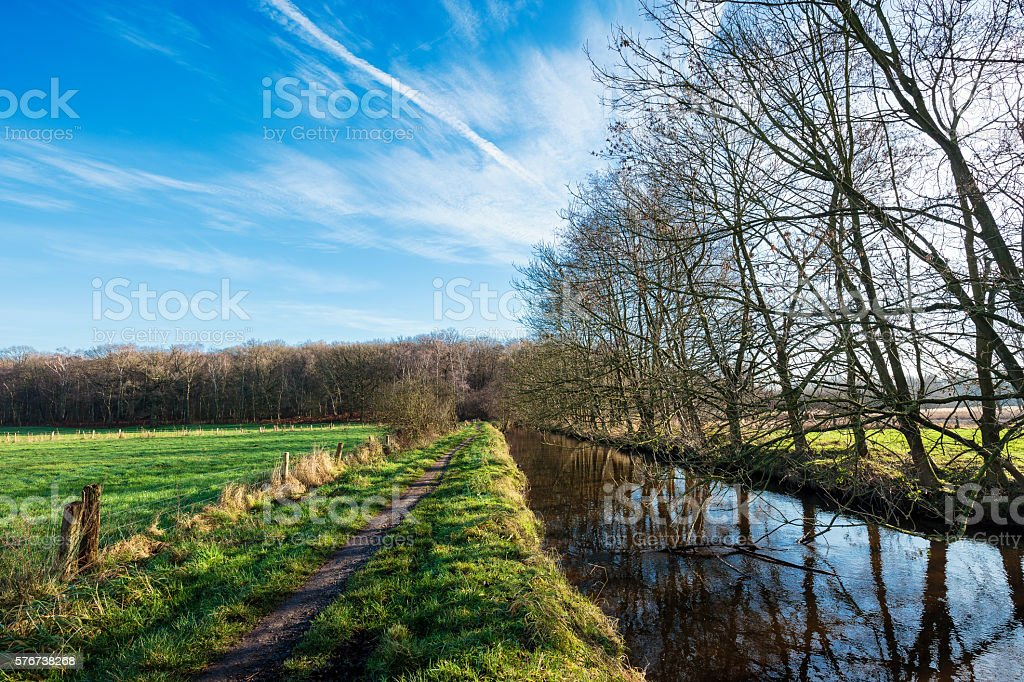 Sunny Winterday in Nature Reserve stock photo
