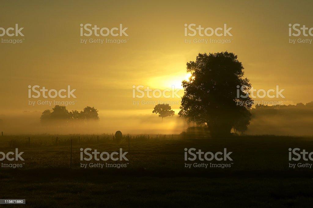 Sunrise 1 stock photo