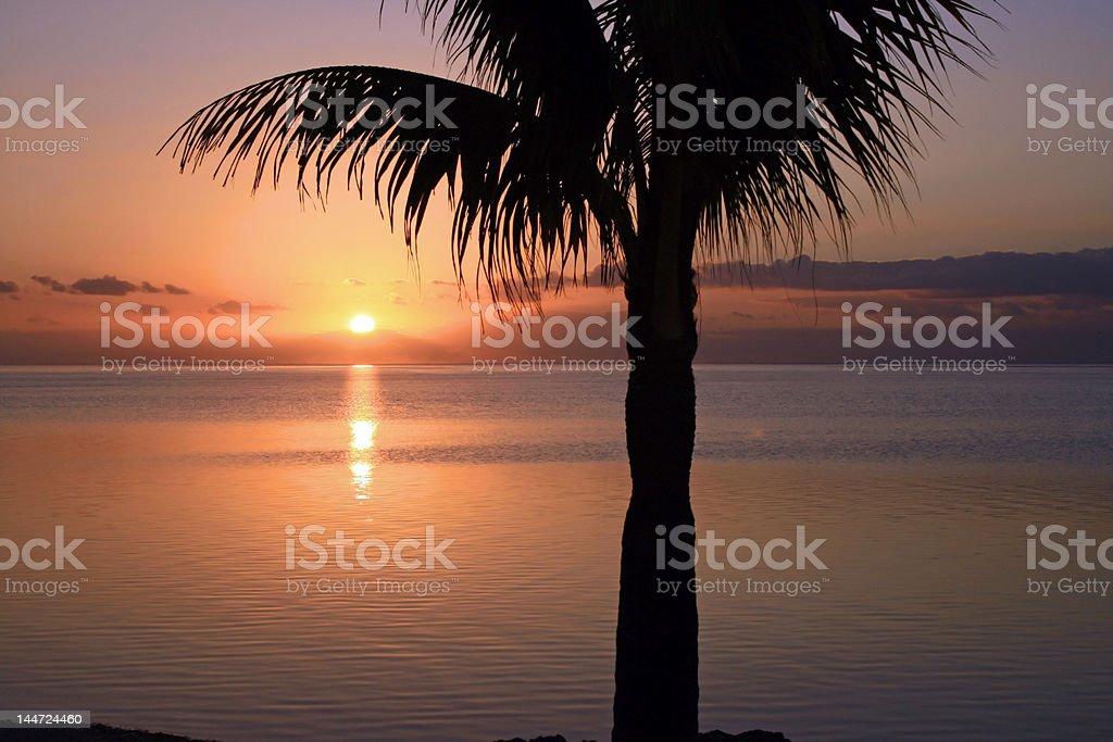 Sunrise 2007221-1 royalty-free stock photo