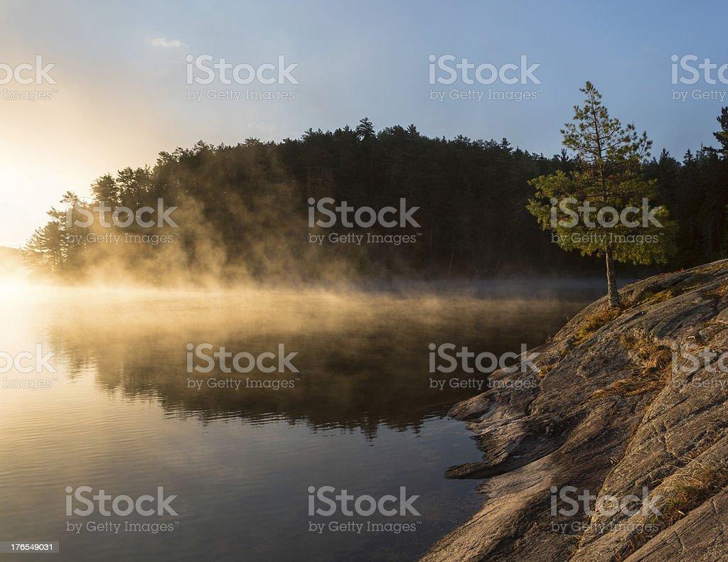 Sunrise, Algonquin Park Lizenzfreies stock-foto