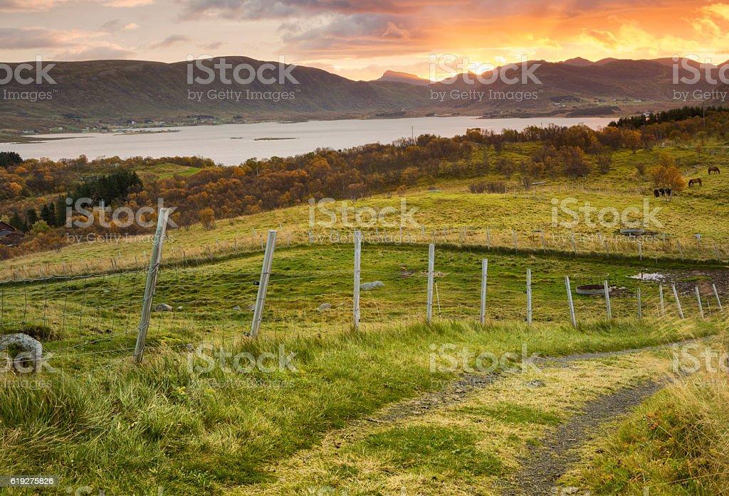 Sunrise and Landscape in Lofoten, Norway stock photo