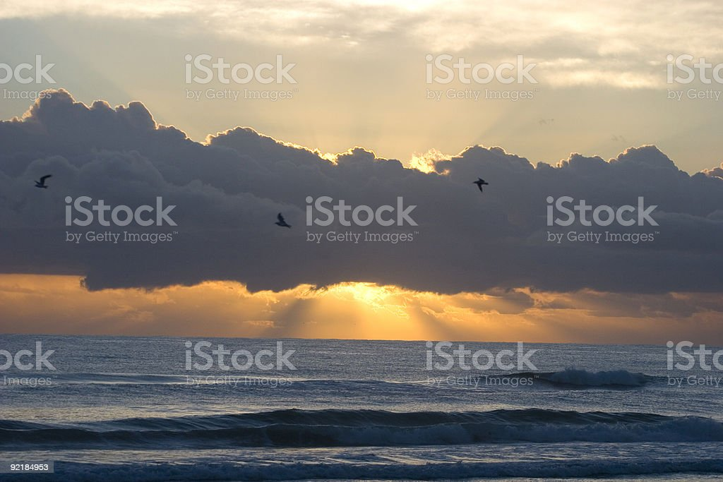 Sunrise and ocean with birds stock photo
