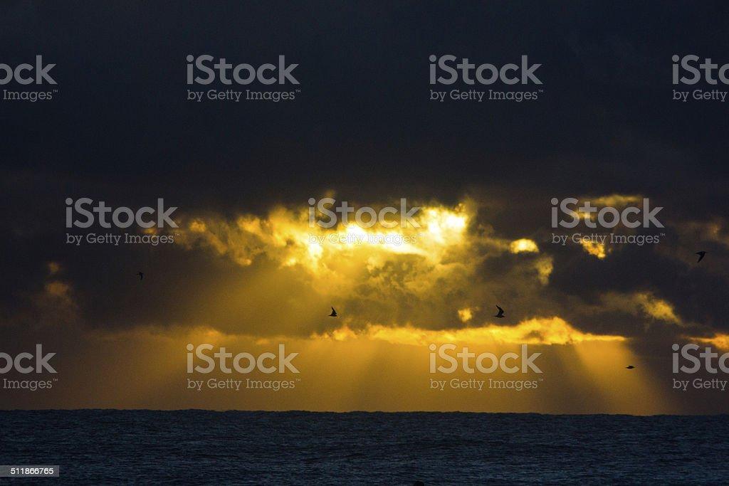 Sunrise at Boulders Beach. stock photo