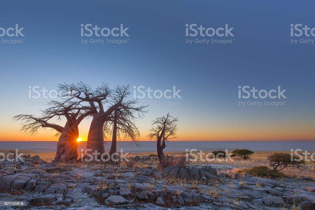 Sunrise at Kubu Island stock photo