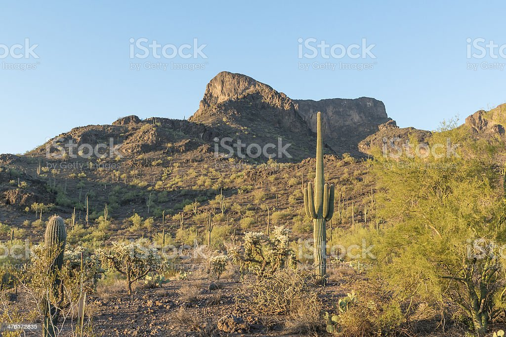 Sunrise at Picacho Peak royalty-free stock photo