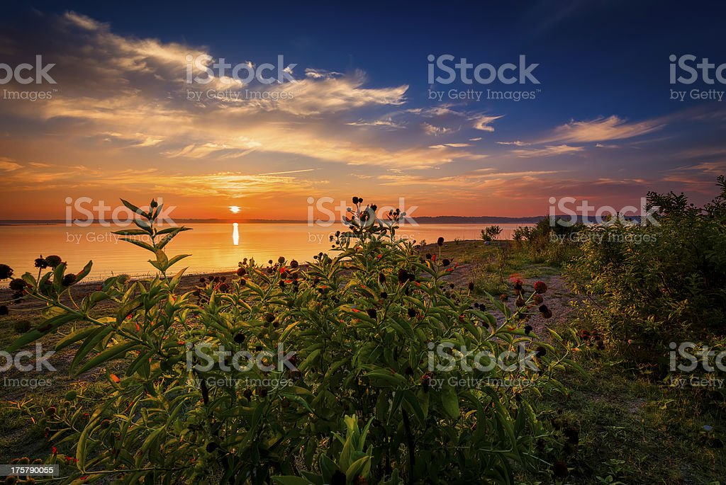 Sunrise at the Lake royalty-free stock photo
