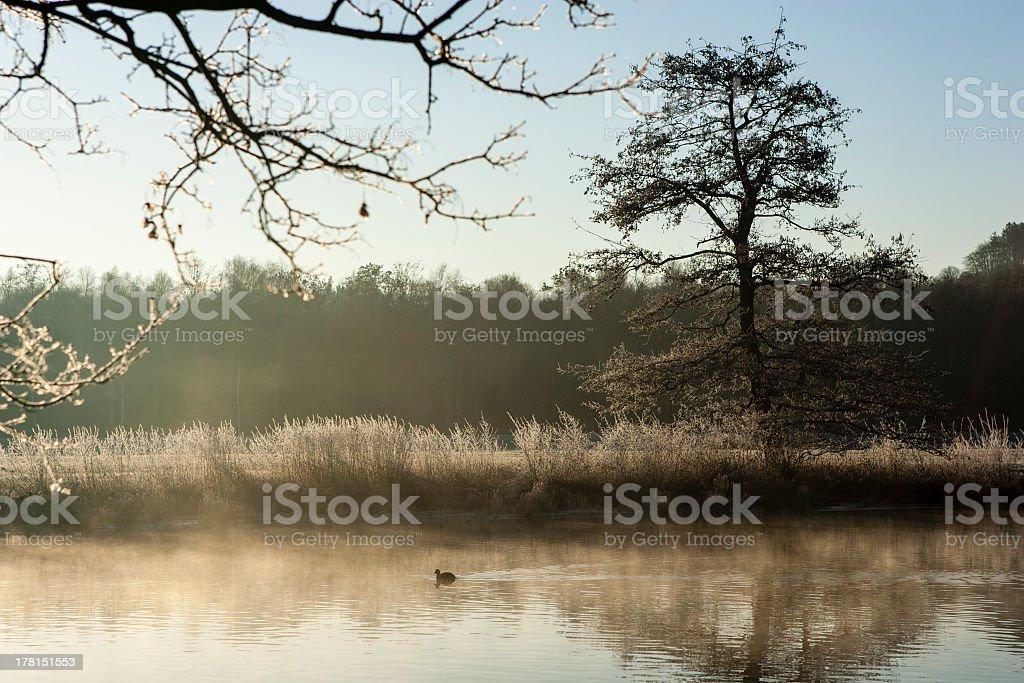 Sunrise at the Ruhr in Schwerte stock photo