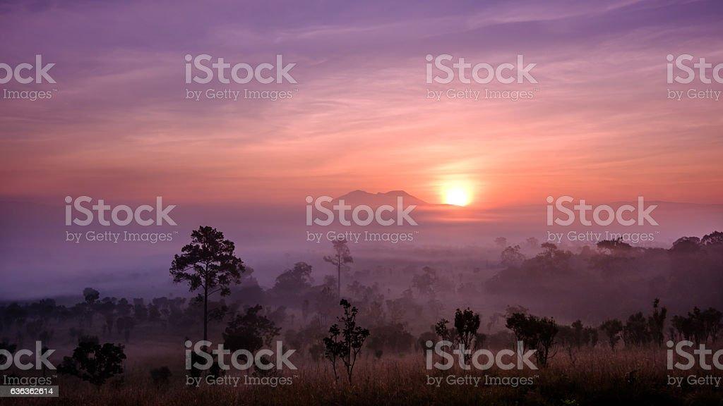 Sunrise at Thung Salaeng Luang National Park, Petchabun Province, Thailand. stock photo