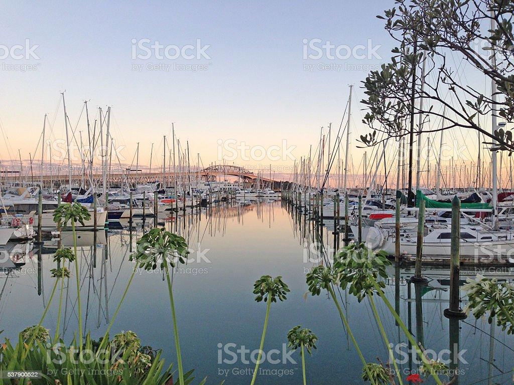 Sunrise at Westhaven Marina, Auckland, New Zealand stock photo