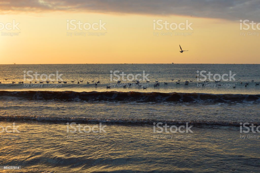 Sunrise by the sea stock photo