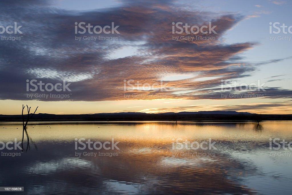 Bosque Sunrise stock photo