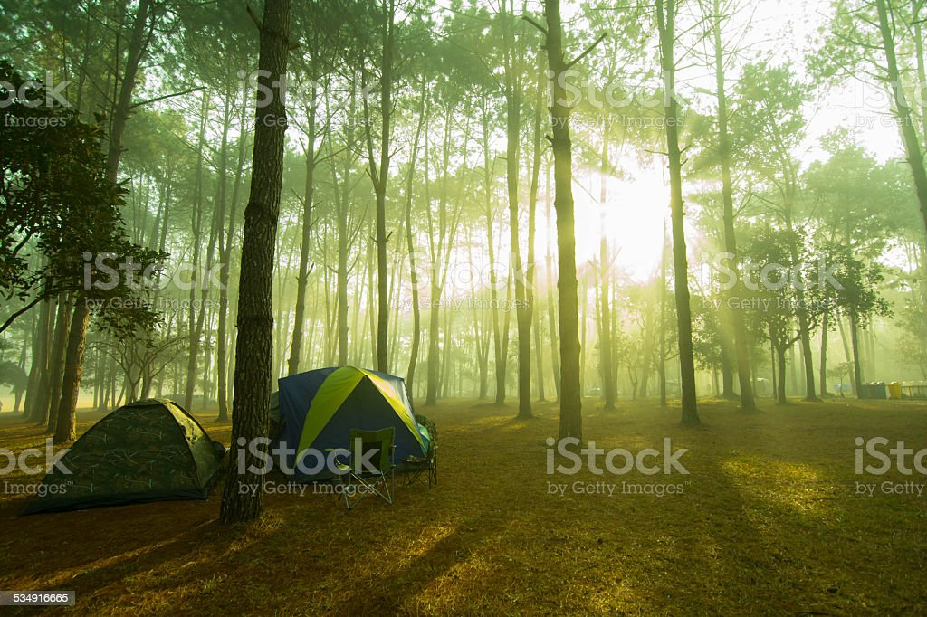 Sunrise in a camping. stock photo