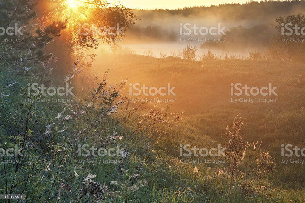 Sunrise in a fog  over the river. royalty-free stock photo
