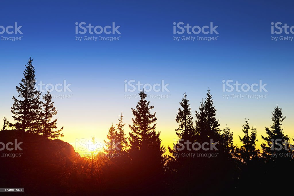 sunrise in nature royalty-free stock photo