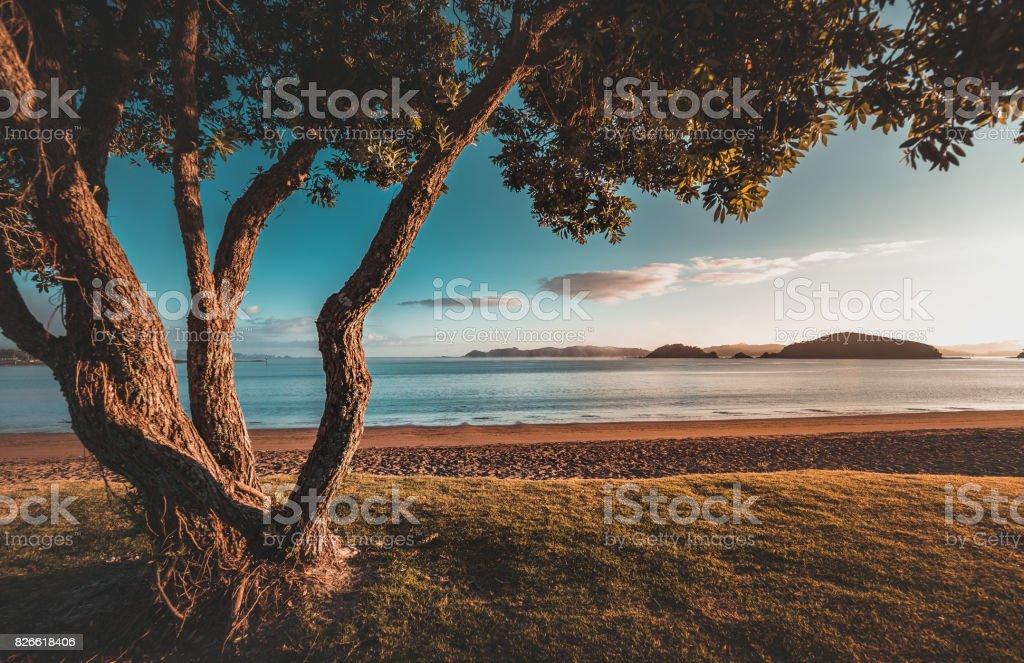 Sunrise in New Zealand Paihia Beach stock photo