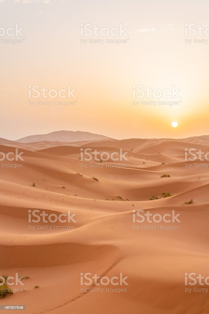 Sunrise in Sahara stock photo