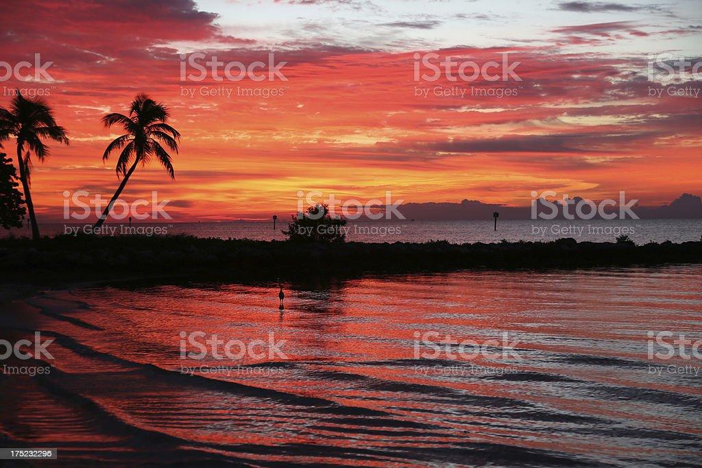 Sunrise in The Floida Keys stock photo